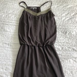 Naked Zebra Grey Dress w/ Gold and Silver Detail